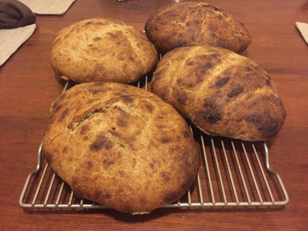 sourdough-loaves